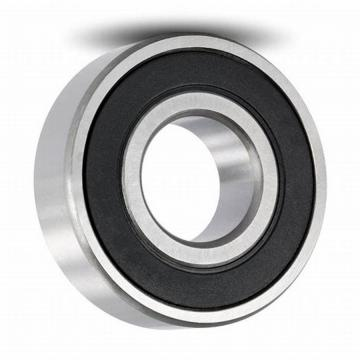 High Quality Needle Roller Bearing HK0609 2RS